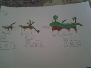Le starteur de type plante (Fertinail) et ses évolutions : Ferriboul et Dipplodante.
